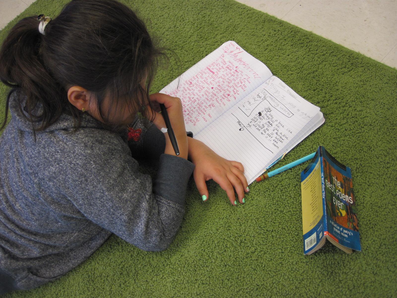 Homework help poetry